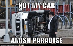 NOT MY CAR  AMISH PARADISE