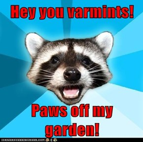 Hey you varmints!  Paws off my garden!