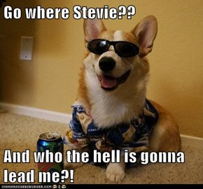 Go where Stevie??  And who the hell is gonna lead me?!