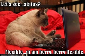 Let's see...status?  Flexible...ai am berry, berry flexible.