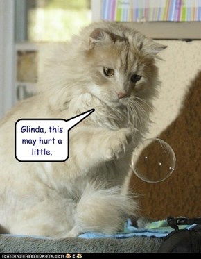 Glinda, this may hurt a little.