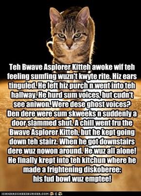Bwave Asplorer Kitteh haz skaree Howleen