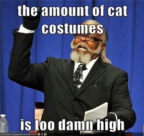 the amount of cat costumes  is too damn high