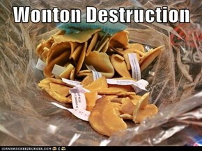 Wonton Destruction
