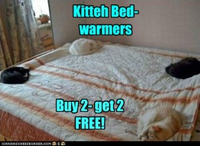 Kitteh Bed-warmers