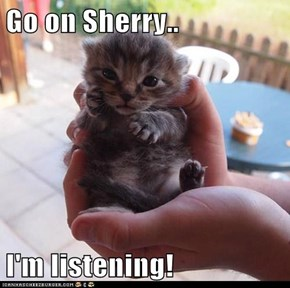 Go on Sherry..  I'm listening!
