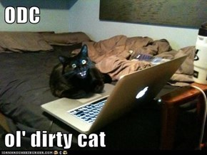 ODC  ol' dirty cat