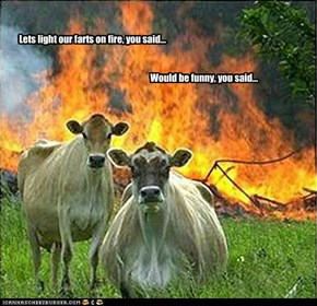 Lets light our farts on fire, you said...