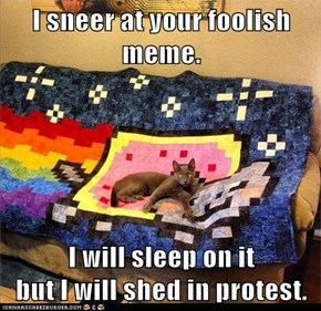 I sneer at your foolish meme.  I will sleep on it                  but I will shed in protest.
