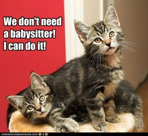 We don't need a babysitter! I can do it!