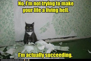 No, I'm not trying to make your life a living hell.