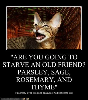 """ARE YOU GOING TO STARVE AN OLD FRIEND? PARSLEY, SAGE, ROSEMARY, AND THYME"""