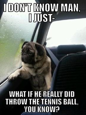 Introspective Pug is Introspective