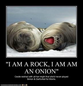 """""""I AM A ROCK, I AM AM AN ONION"""""""