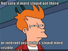 Not sure if more stupid out there  or internet just makes stupid more visible