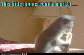 This little piggie went to market . . .