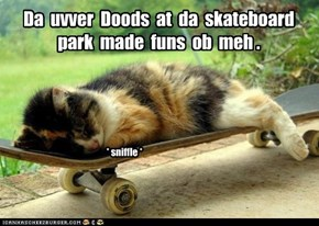 Da  uvver  Doods  at  da  skateboard  park  made  funs  ob  meh .