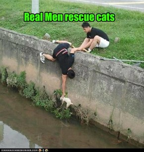 Real Men rescue cats