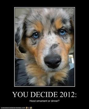 YOU DECIDE 2012:
