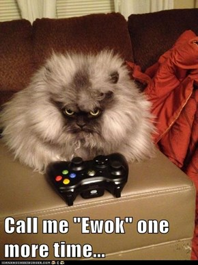 "Call me ""Ewok"" one more time..."