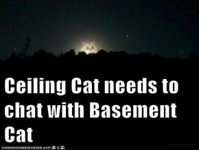 Ceiling Cat needs to chat with Basement Cat