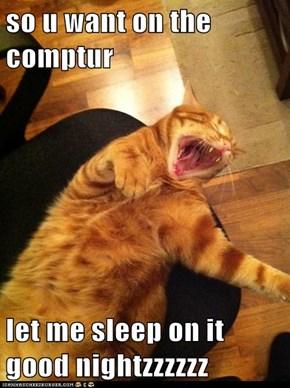 so u want on the comptur  let me sleep on it good nightzzzzzz