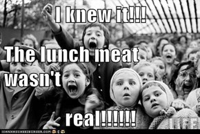 I knew it!!! The lunch meat wasn't real!!!!!!