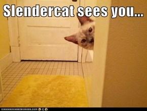 Slendercat sees you...
