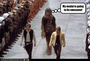 Sorry Chewie