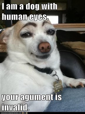 I am a dog with human eyes.  your agument is invalid.