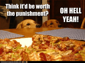 Oh yer  pizza !