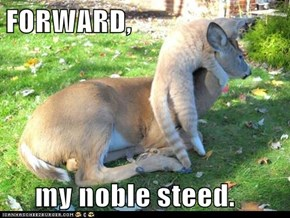 FORWARD,       my noble steed.