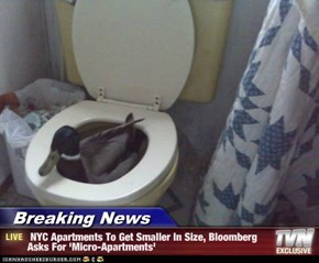 Breaking News -  NYC Apartments To Get Smaller In Size, Bloomberg Asks For 'Micro-Apartments'