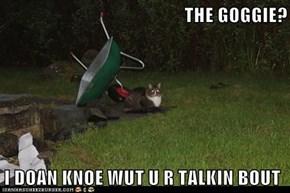 THE GOGGIE?  I DOAN KNOE WUT U R TALKIN BOUT