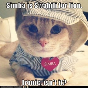 Simba is Swahili for lion.  Ironic, isn't it?