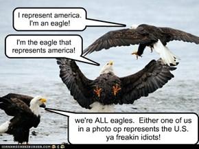 I represent america.  I'm an eagle!