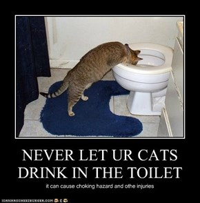 NEVER LET UR CATS DRINK IN THE TOILET