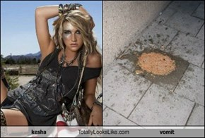 kesha Totally Looks Like vomit