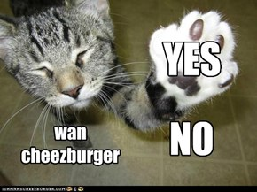 wan cheezburger