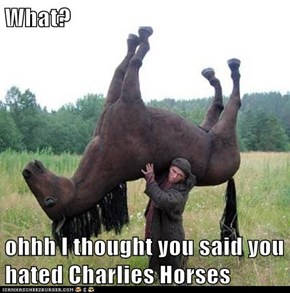 What?  ohhh I thought you said you hated Charlies Horses