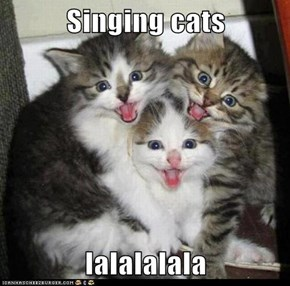 Singing cats  lalalalala