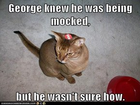 George knew he was being mocked,  but he wasn't sure how.
