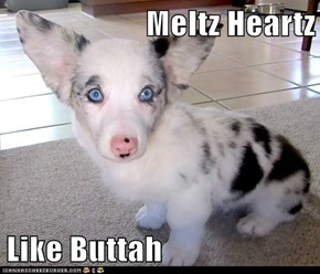 Meltz Heartz   Like Buttah