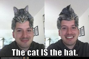 The cat IS the hat.