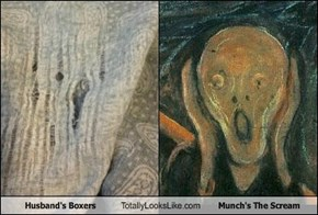 Husband's Boxers Totally Looks Like Munch's The Scream