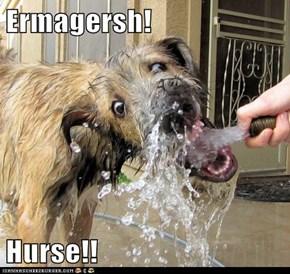 Ermagersh!  Hurse!!