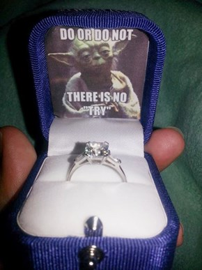I'll Try to Marry You?