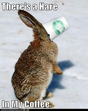 There's a Hare   In My Coffee
