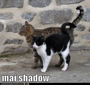 mai shadow