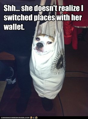 Shh... she doesn't realize I switched places with her wallet.